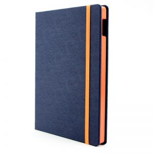 Blue Jeans iPad Case