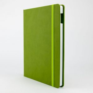 Pistachio iPad Case
