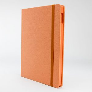 Tangerine Dream iPad Case